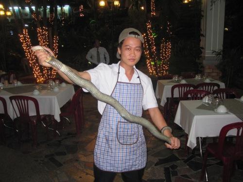 Nhà hàng chuẩn bị hành quyết rắn. Ảnh: Phanxipăng