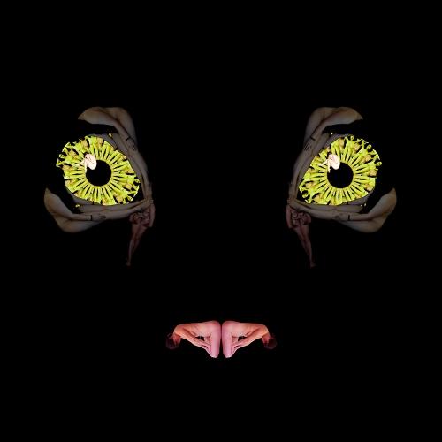 Cat Eyes / Mắt mèo