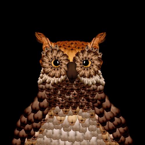 Owl / Cú mèo