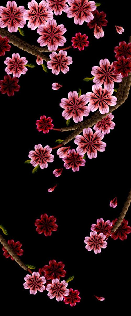 Sakura / Hoa anh đào