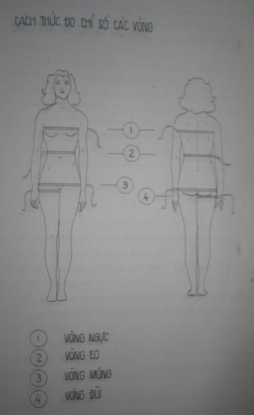 Cách thức đo các vòng ngực, eo, mông, đùi. Người vẽ: Trương Thị Sao Mai